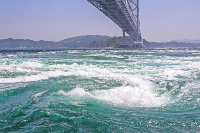 徳島県の入札の流れや準備する物