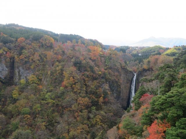 福岡県入札の流れと情報の探し方